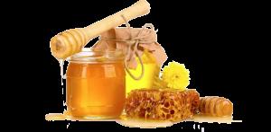 honey-trans-zenjenskin